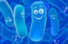 Для чего нужны пробиотики?