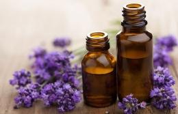Возможности лечения запахами