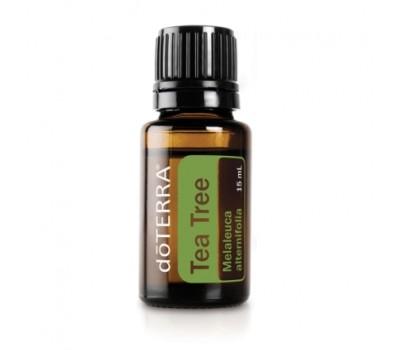 Эфирное масло Чайного дерева - Tea Tree (Melaleuca)
