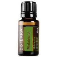 Эфирное масло Чайного дерева - Melaleuca