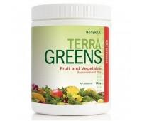 Terragreens (Зеленая планета) - коктейль с высококачественной клетчаткой