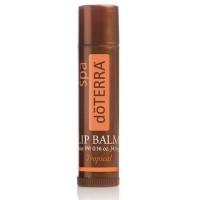 Бальзам для губ Тропический - Lip Balm Tropical
