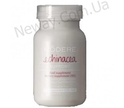 Echinacea (Эхинацея) - иммунокорректор