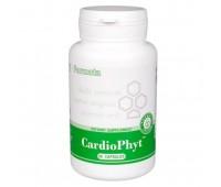 CardioPhyt (КардиоФит) - кардиопротектор, антиоксидант