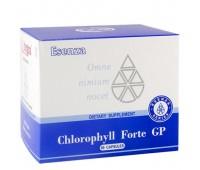 Chlorophyll Forte GP ( Хлорофилл Форте ДжиПи) - источник натурального хлорофилла в наиболее биодоступной форме