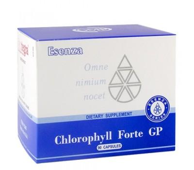 Chlorophyll Forte GP -  хлорофилл