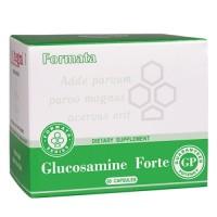 Glucosamine Forte (Глюкозамин Форте) - источник глюкозамина и хондроитина