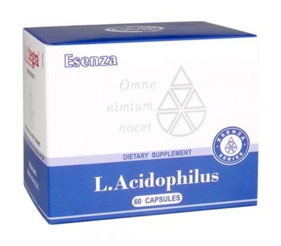 L.Acidophilus – источник ацидофильных бактерий